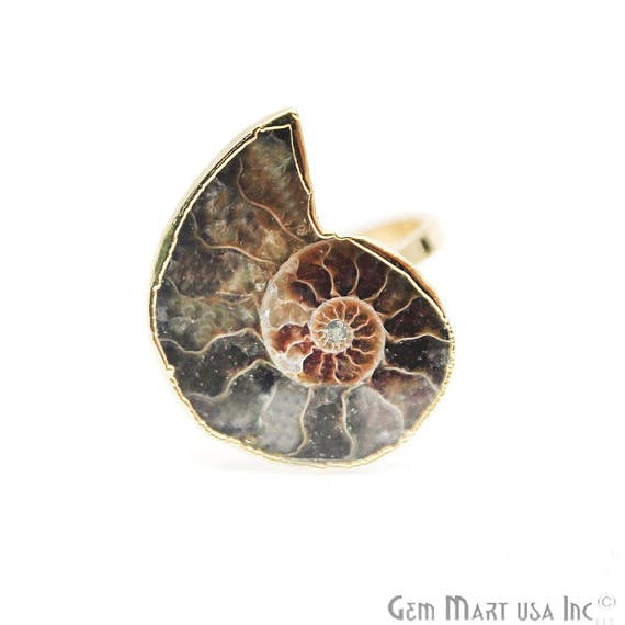 Ammonite Gold Plated Ring, Adjustable Fashion Jewelry Statement Ring (GPAN-12001)