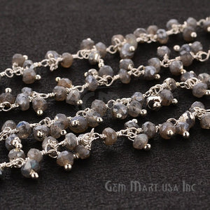 Mystique Labradorite Faceted Beads Silver Plated Cluster Dangle Chain - GemMartUSA