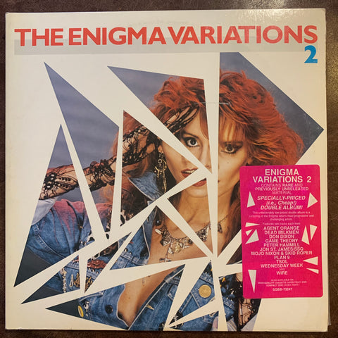 Enigma Variations 2 (Punk compilation/various artists)