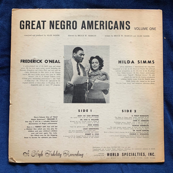The Black Experience In America- select vinyl