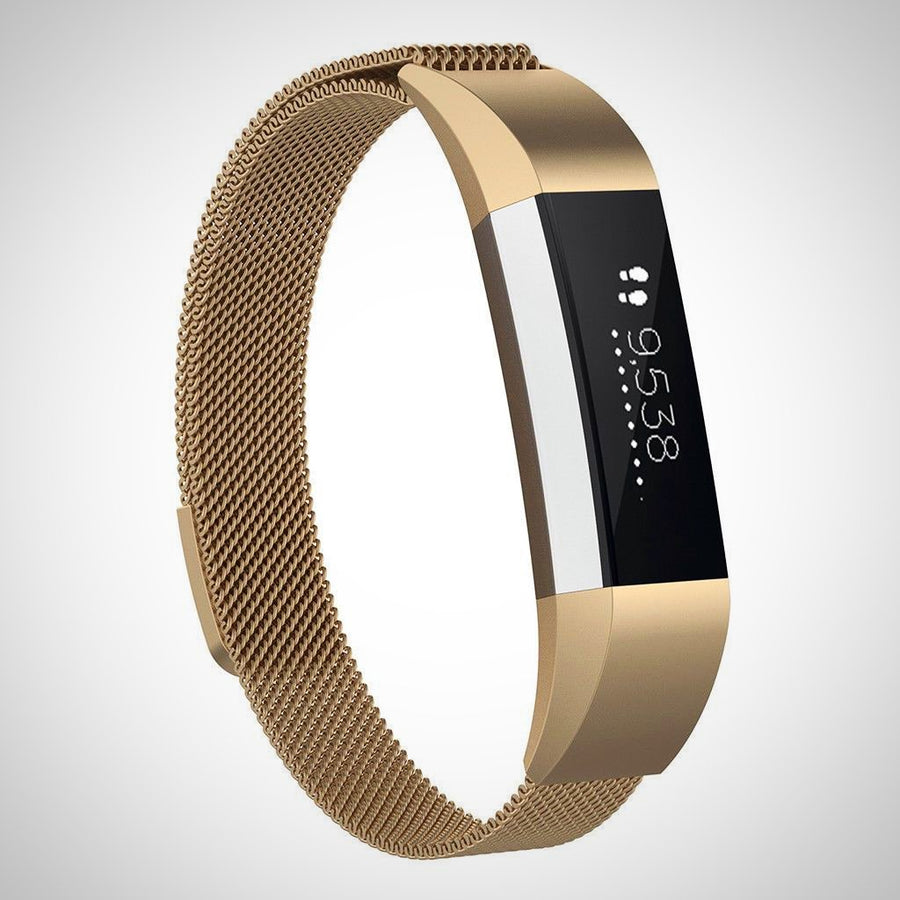 Fitbit Ace Kids SS Steel Milanese Band Strap