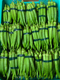 Okra Wholesale (P110 x 5 Kilos) Sorted First Class