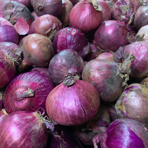Onion Red / Sibuyas Wholesale (P120 x 10 Kilos) Sorted 1st Class