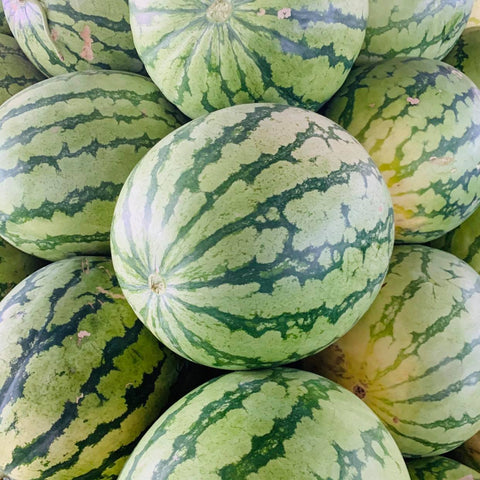 Water Melon (Large 6 - 8 Kilos)
