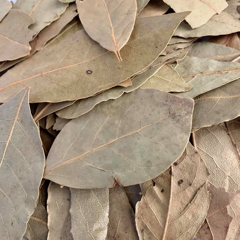 Bay Leaf / Laurel (1 pack)