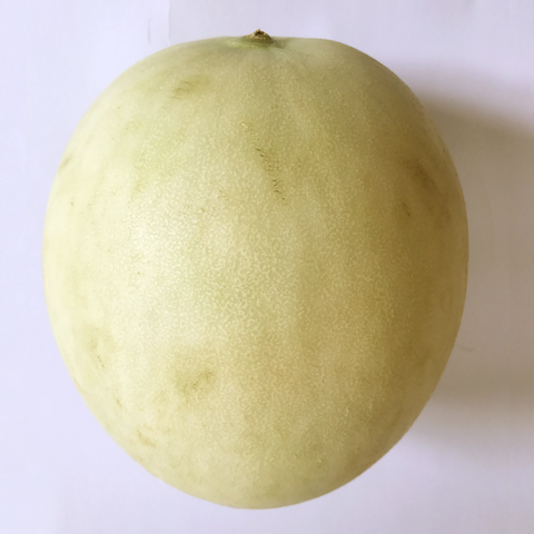 Honeydew ( Large 1 - 2 kilos)