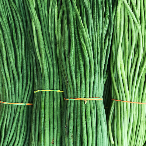 String Beans / Sitaw (Wholesale 10 Kilos)
