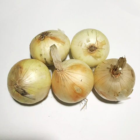 Onion White / Sweet Onion / Sibuyas (1 Kilo)