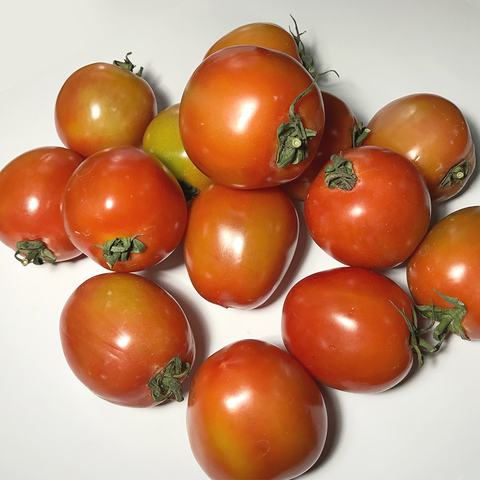 Tomato / Kamatis (1 Kilo) BUY 1 TAKE 1 PROMO