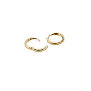 Charm Hoops in Gold