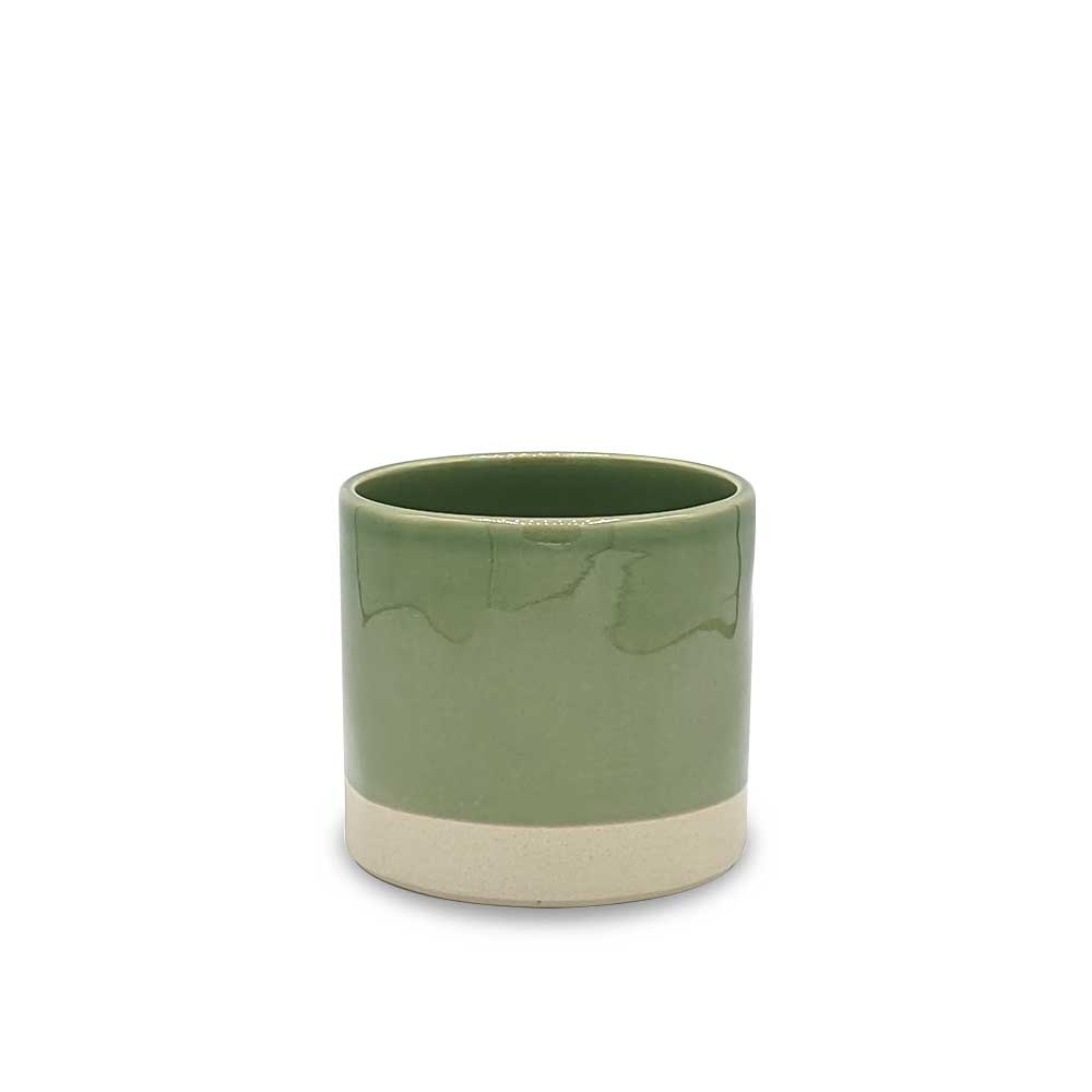 Parrot Green Ceramic plant pot - small