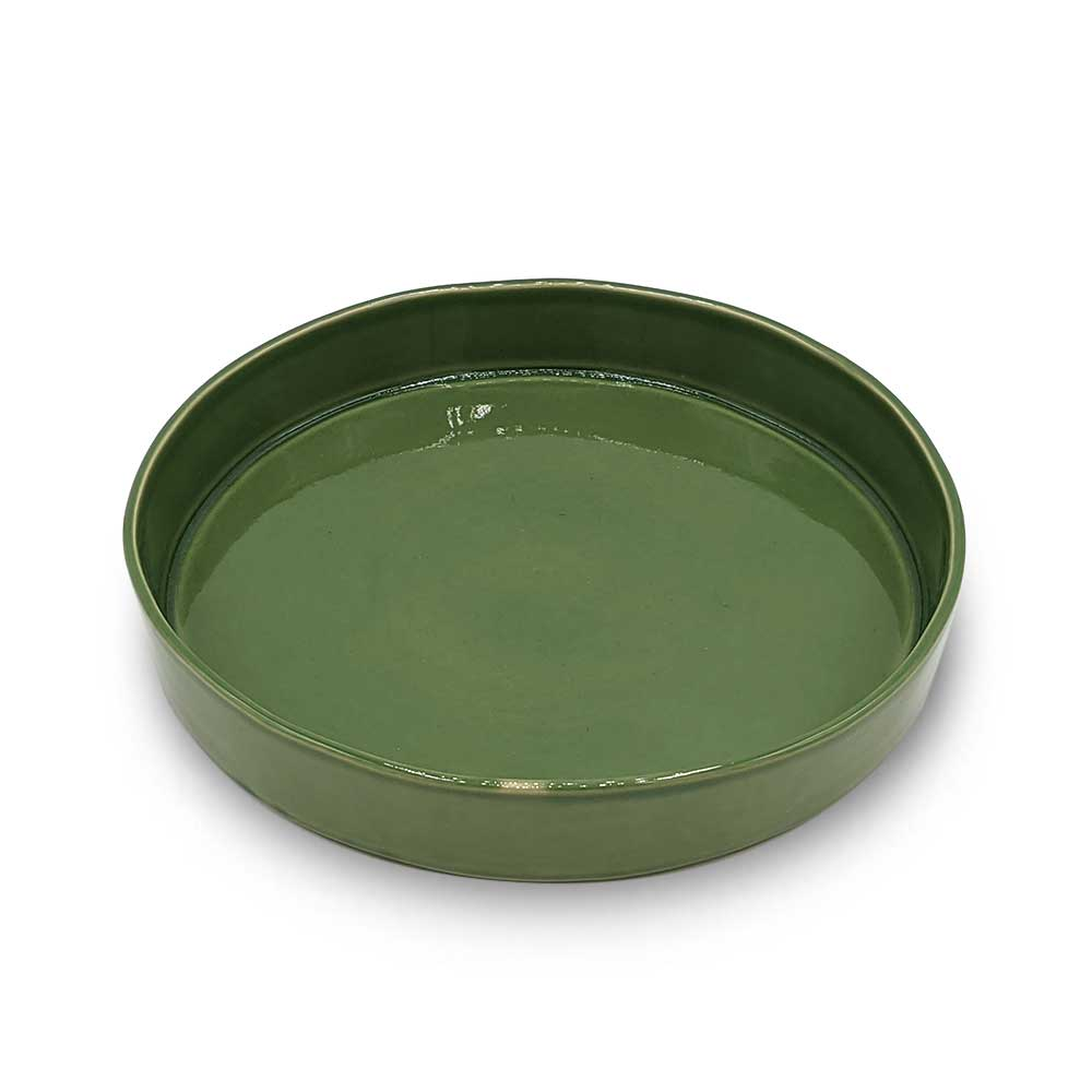 Parrot Green Pasta Bowl - Large