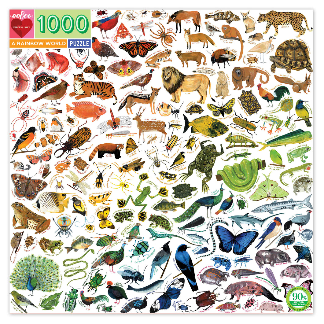 Eeboo 1000 piece - Rainbow World