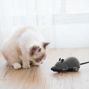 AdorablyCat Mouse Toy