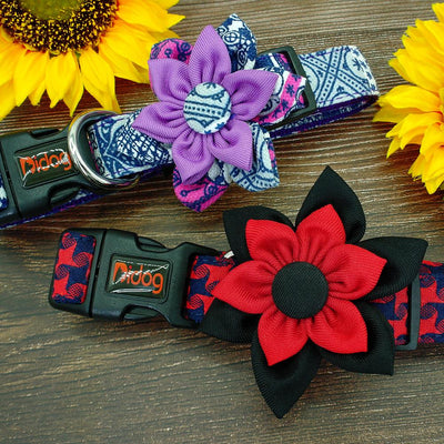 Lively Flower Dog Collar