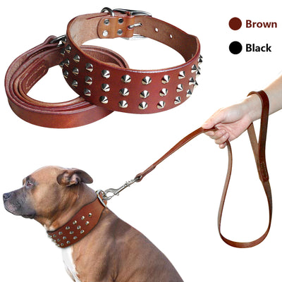 Studded Genuine Leather Dog Collar Leash Set