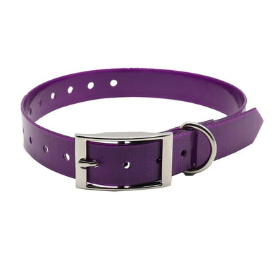Belt Nylon Dog Collar