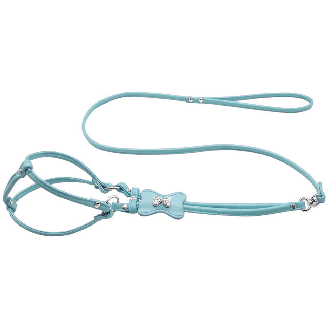 Gorgeous Dog Harness and Leash Set