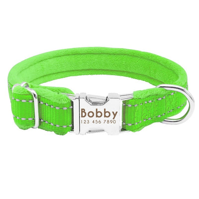 Designer Dog Collars