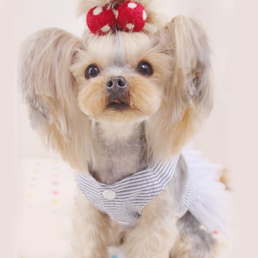 Princess Dog Dresses