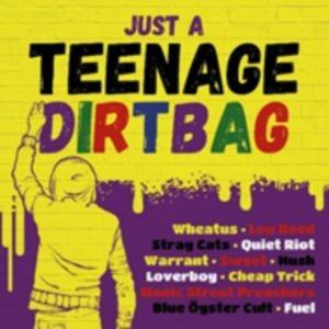 Just A Teenage Dirtbag