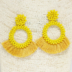 Funky Flair Fringe Earrings
