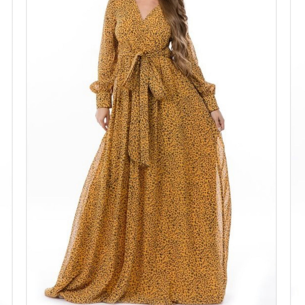 Hear Me Roar Maxi Dress