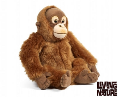 Living Nature Orangutan