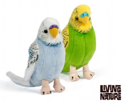 Living Nature Budgie / Budgerigar