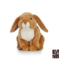 Living Nature French Lop Eared Rabbit