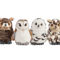 Living Nature Owls 4 Assorted