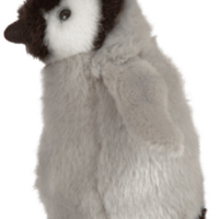 Living Nature Penguin Chick