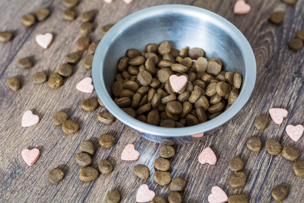 Omega-3 Fatty Acid Dog Food