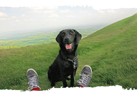 Happy Go Healthy Dog Supplements - image of black dog on a mountain