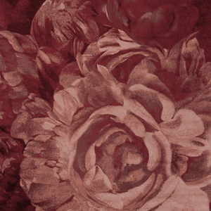 Carpet Stitchy Roses +