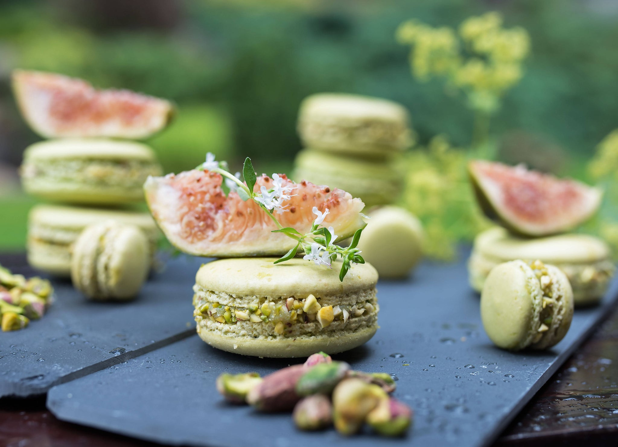 Fig Macarons