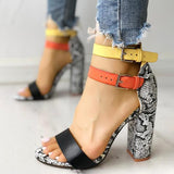 Micasahi Contrast Color Snakeskin Buckled Chunky Heeled Sandals