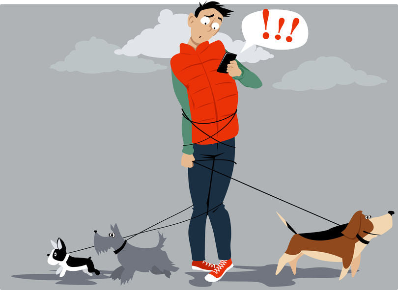 Retractable Leash Horror Stories Get Wagging