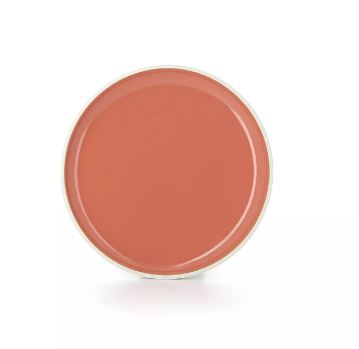 REVOL COLOR LAB DINNER PLATE - CAPUCINE - Mabrook Hotel Supplies