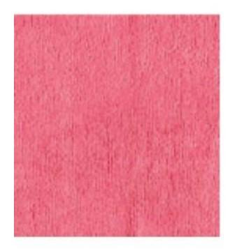 MULTI-T MICROFIBRE CLOTH, SIZE: 40 X 40cm, RED (PACK OF 5)