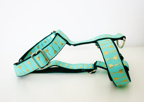 Blue Arrow Harness