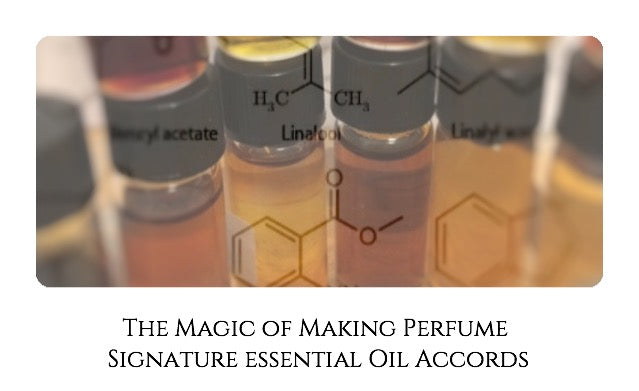 The Magic of Making Perfume