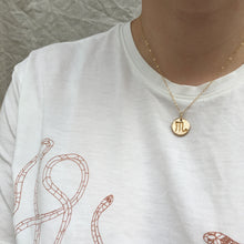 Load image into Gallery viewer, GEMINI Reversible Coin Necklace