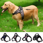Dog Harness Backpack Adjustable For Small Medium Large Dogs - Ecosmart Product