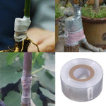 Grafting Tape Film Self-adhesive Portable Grafting Supplies Stretchable Eco-friendly - Ecosmart Product