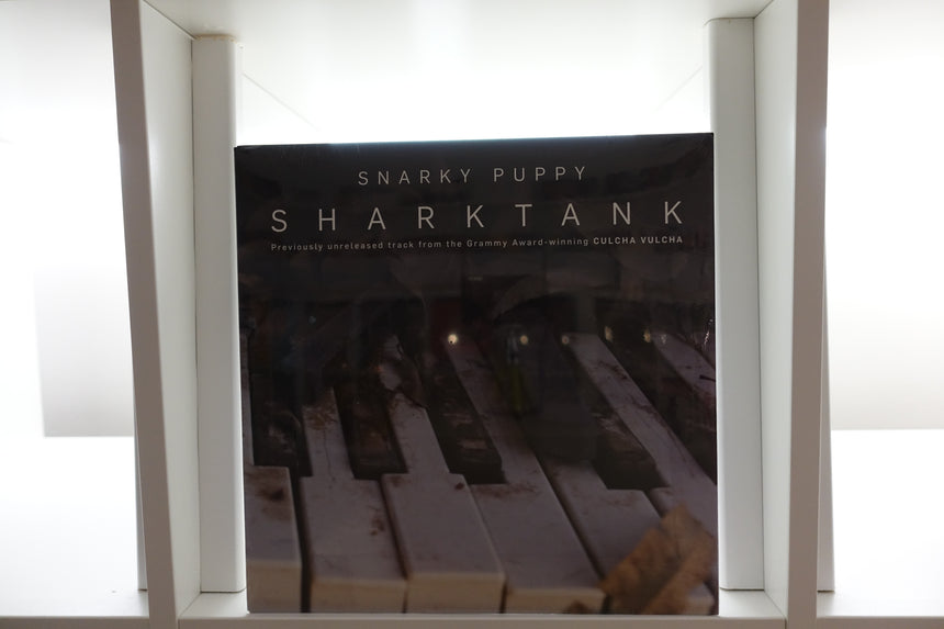 Snarky Puppy - Shark Tank