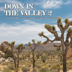 Various Artists - Down In The Valley 2
