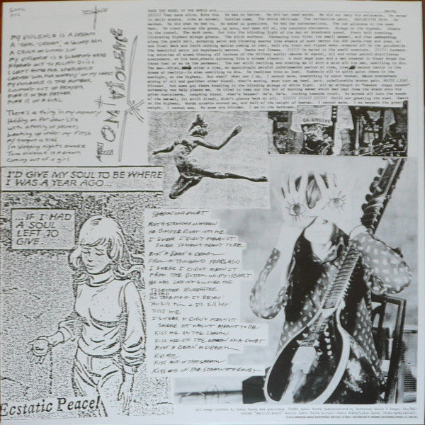 "Sonic Youth EVOL vinyl 1x 12"" LP remastered reissue"