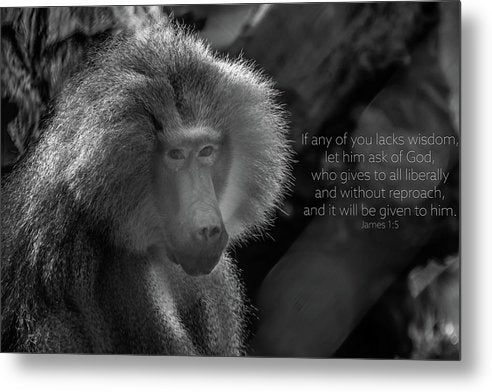 let him ask of God - Metal Print - GOD FIRST ATTIRE