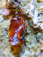 Load image into Gallery viewer, Carnelian Fossil Agate - Agatized Earth